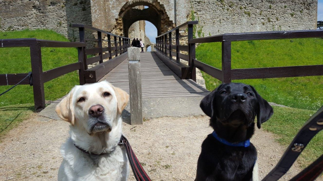 Daisy and Archie outside Old Sherborne